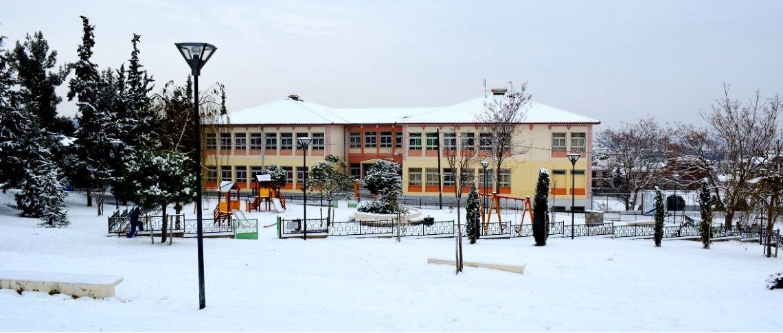Χιόνια στο Συνοικισμό! (δείτε φωτογραφίες)