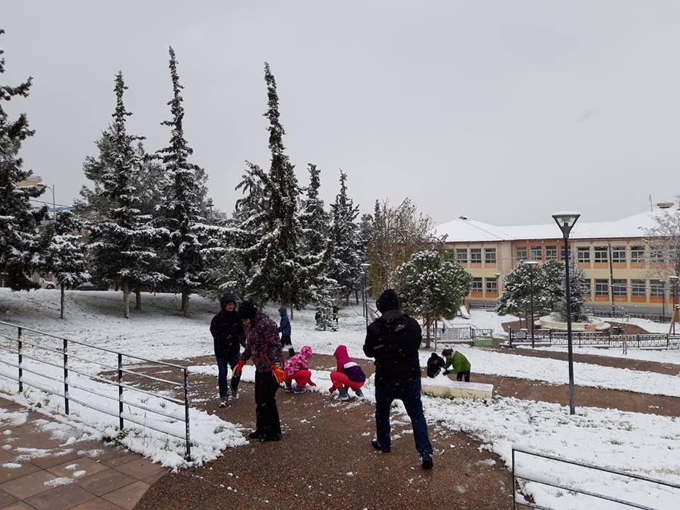 Αργύρης Λιάπης, Πάρκο του Μαθητή